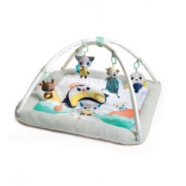 Centru de joaca din plus Tiny Love Gymini Polar Wonders