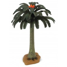 Copac Cycad Collecta